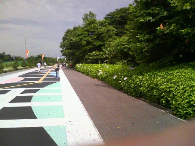 浦和美園への道