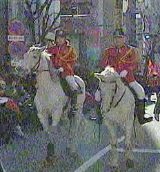 優勝パレードの馬